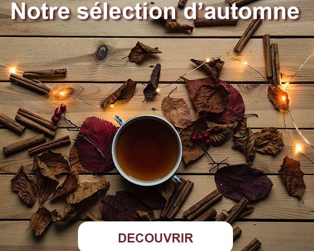 saveurs-automne-the-bio-reiwa